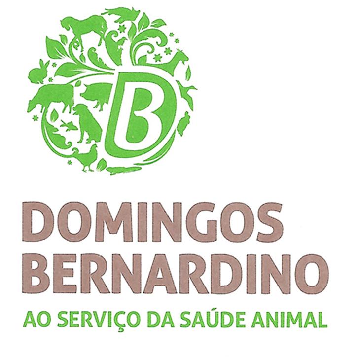 Domingos Bernardino